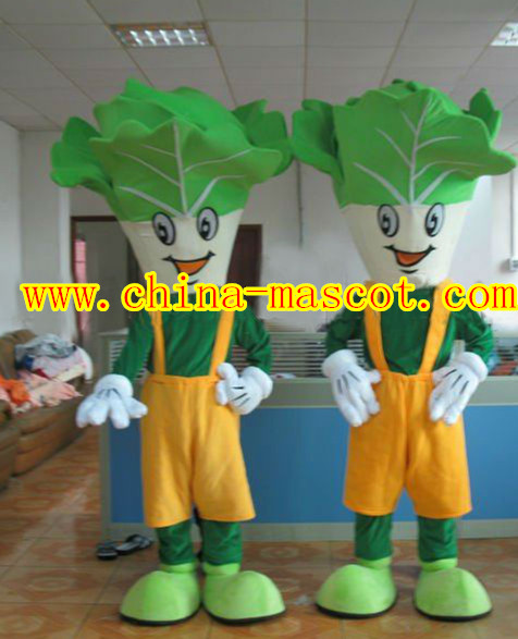 cabbage vegetables costume