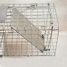 CE Certificate Approved Large Raccoon Trap rabbit trap