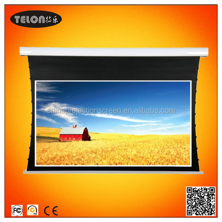 1:1 Electric projection screen(GB)