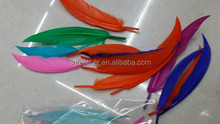 Wholesale DIY Dyed 12cm Goose Feather