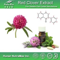 100% Natural Red Clover Herb Extract/Red Clover Powder/Red Clover P.E.