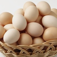 fresh egg specifications made in china the big green