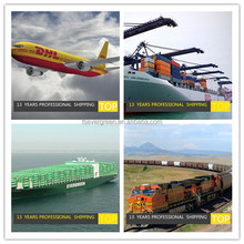 Air /sea/ocean freight , worldwide logistics ltd tracking and shipping