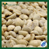 green arabica coffee beans bulk green coffee beans for sale