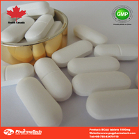 OEM Brand private label 2:1:1 BCAA health food supplements