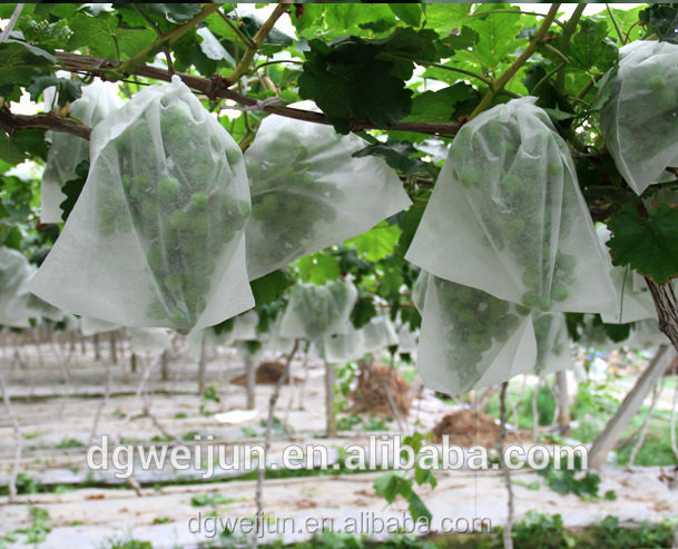 100%pp white increase suger fruit bag mesh bag for Cantaloupe