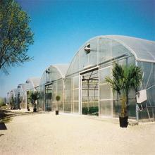 Agriculture plastic large multi span greenhouse for sale