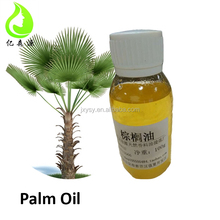 Pharmaceutical Grade Crude Palm Oil Best Price Organic Pure Natural Plant Extract for Medicine Cosmetics Lubricant Raw Material