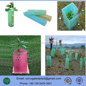 UV Treated PP Corflute Plastic Triangle Tree Guards/ Square Tree Protectors