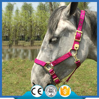 H1001 Triditional Nylon Webbing Adjustable Horse Halter/headcollar