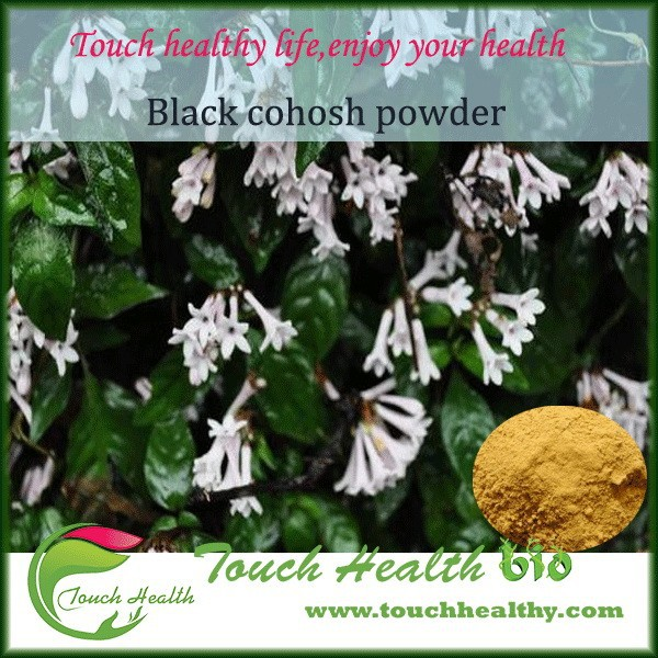 2017 Touchhealthy supply Free Samples Natural Black Cohosh Extract use for Anti-rheumatism