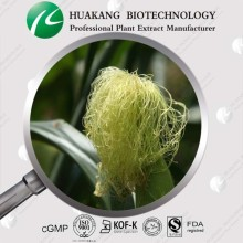 Cornsilk Extract, Cornsilk Extract Powder, Cornsilk Powder