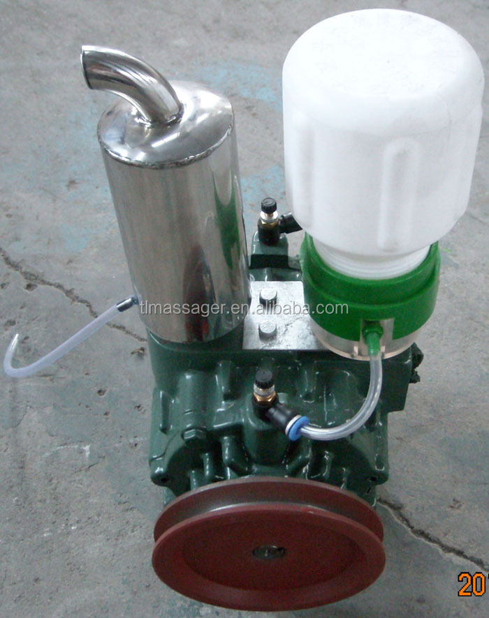 Rotary vane vacuum pump 220L for milking machine