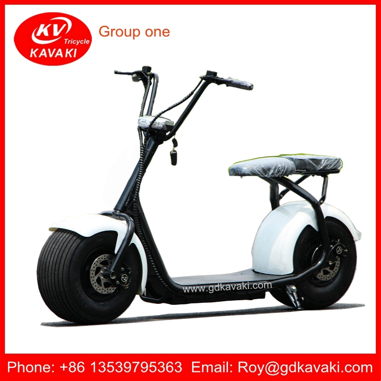 China Factory Citycoco/seev/woqu 2 Wheel Self Balancing Mobility Electric Chariot Covered Electric Scooter