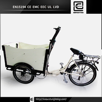 cargo electric vehicle electric cargo bike BRI-C01 gas moped with pedals