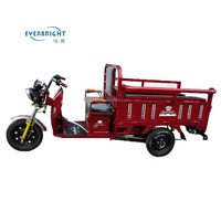 china wuxieverbright sale powerful electric auto rickshaw tricycle cargo capacity 500kg with price list