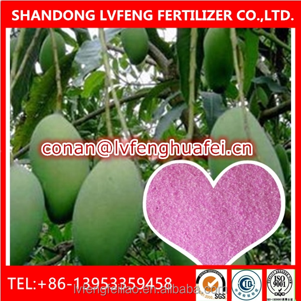 Foliar Fertilzier NPK 20-20-20 Special For Mango Trees