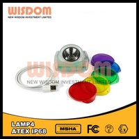 Wisdom Lamp 4 Waterproof Outdoor Capming