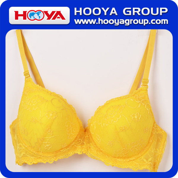 Fashion Lace Bra Free Sample Best Extreme Push Up Bra