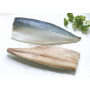 2017 IQF hot sale high quality whole block frozen canned mackerel fish fillet