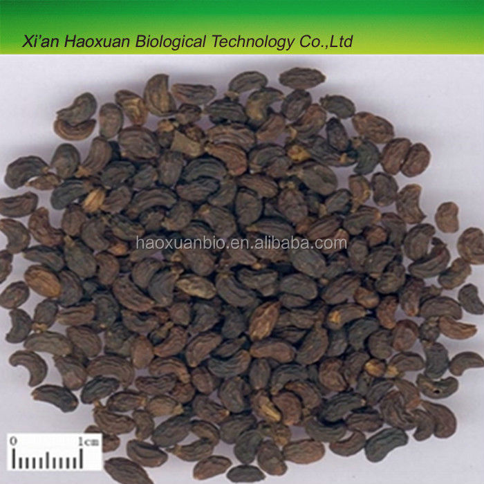 100% pure Glossy Privet/Ligustrum Extract Powder for sale