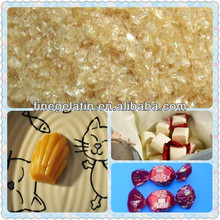 gelatin for food/hot seller food gelatin/bovine gelatin plant