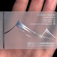 Customized Printed Pvc Transparent Business Cards