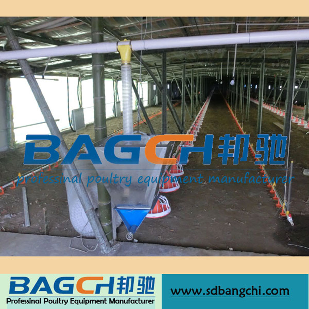 Complete Broiler Poultry Control Shed Equipment