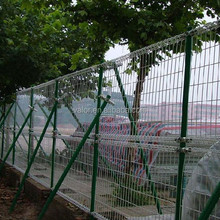 Galvanized PVC Coated Ornamental Double Loop Wire Mesh Fence