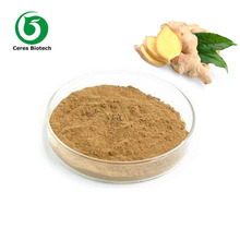 Plant Extract Manufacturer Supply Ginger Powder