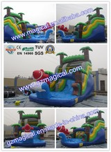 Backyard Wet & Dry Slide With Pool Inflatable Water Slide