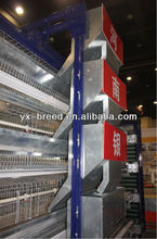 H type design layer chicken cages with full automatic system
