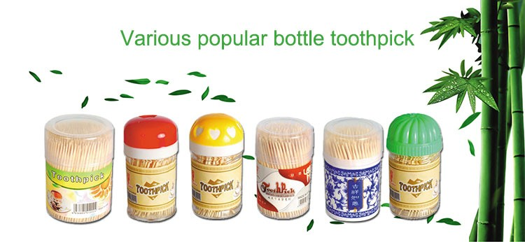 Good Price disposable bamboo toothpick in bottle