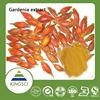Manufactuer Supply Natural Gardenia Extract With 10%-98% Gardenoside Free Sample