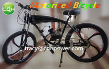Hot sale motorized bicycle for sale/gas powered bicycle engine kit