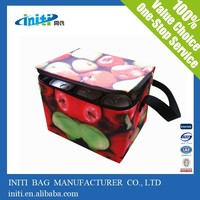 High Quality Eco Friendly Lunch Bag As Insulated Disposable Meal Cooler Bags