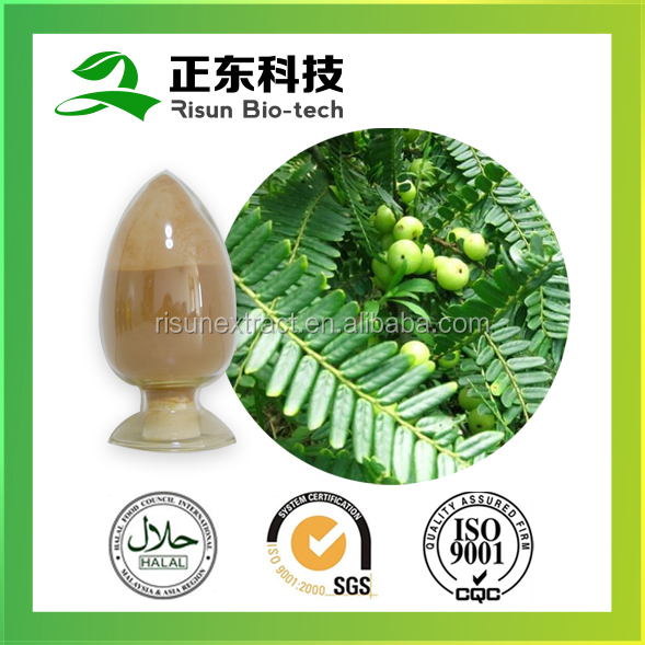 Spary Dried Bulk Store Amla Fruit Extract 10:1