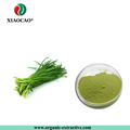 GMP Manufacture water-soluble leek Extract/ leek Extract Powder