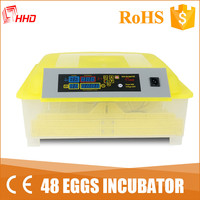 Family type automatic incubatrice for eggs of used hen YZ8-48