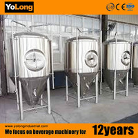 Supply 500L good and cheap sus304 beer fermentation chamber for brewery, restaurant,hotel