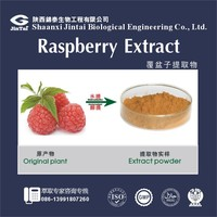 Factory supply fruit extracts Raspberry extract 10:1