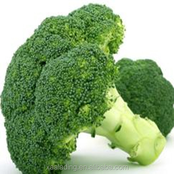 Pure plant health products 10:1 Broccoli Extract