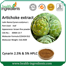 High quality natural low price organic artichoke and pregnancy