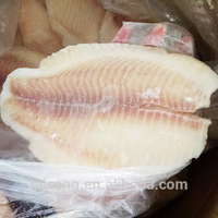 Hot Sell IQF Frozen Kosher Tilapia Fillet Price
