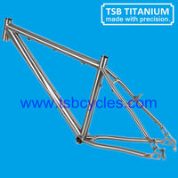 China titanium bicycle frame sale TSB-MBM1102