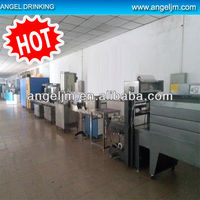 XGF12-12-1 Angel Mineral Water Washing/Filling/Capping Machines