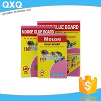 high quality good price mouse on glue trap