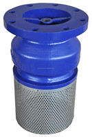 Water Pump Flanged ends Foot Valves With Strainer