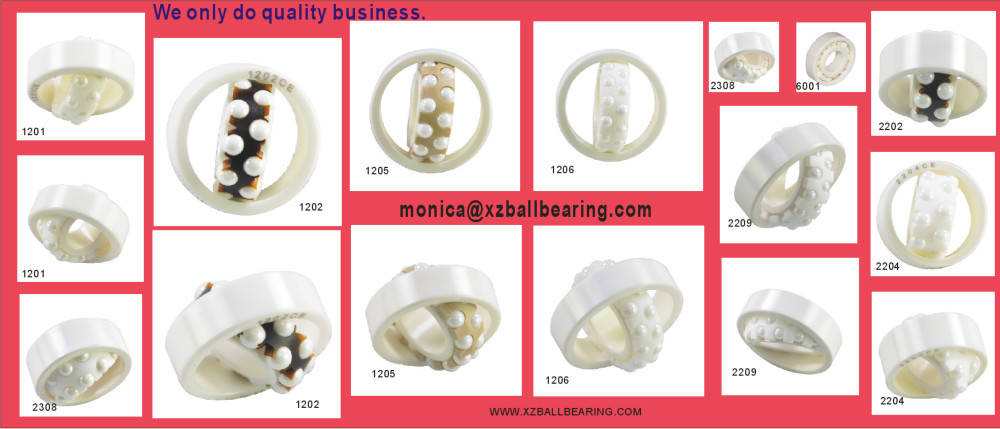 696 2RS PTFE cage full Si3N4 ceramic ball bearing 6x15x5 696