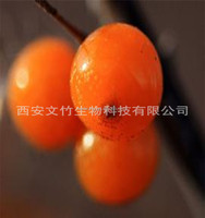 The Top Quality Sea buckthorn Berry seed Oil / seabuckthorn fruit oil